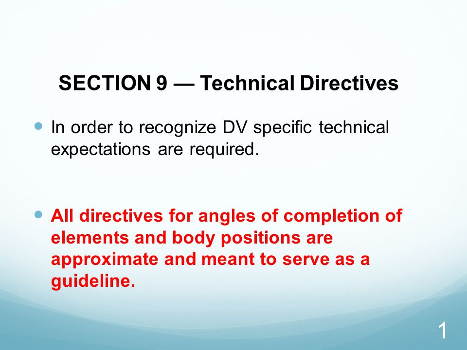 SECTION 9 — Technical Directives In order to recognize DV specific technical expectations are required.