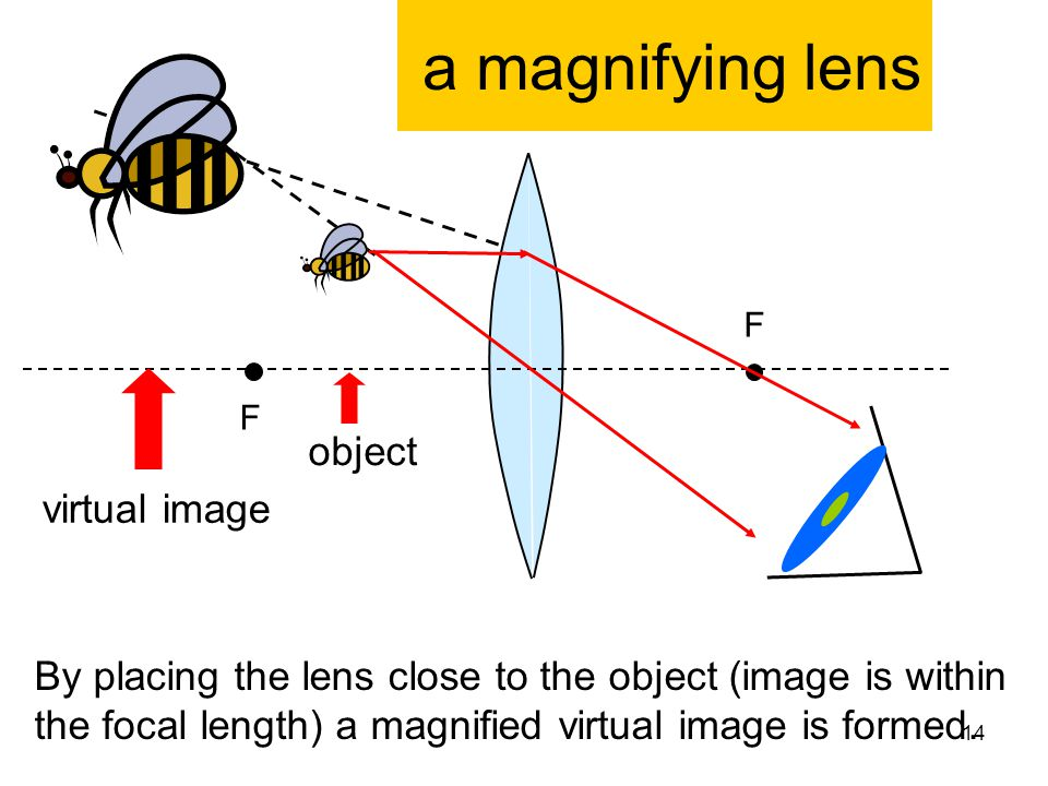 a magnifying lens F F object virtual image By placing the lens close to the object (image is within the focal length) a magnified virtual image is for