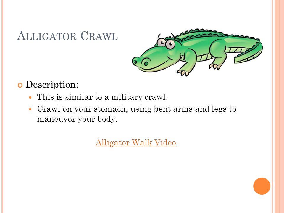 A LLIGATOR C RAWL Description: This is similar to a military crawl.