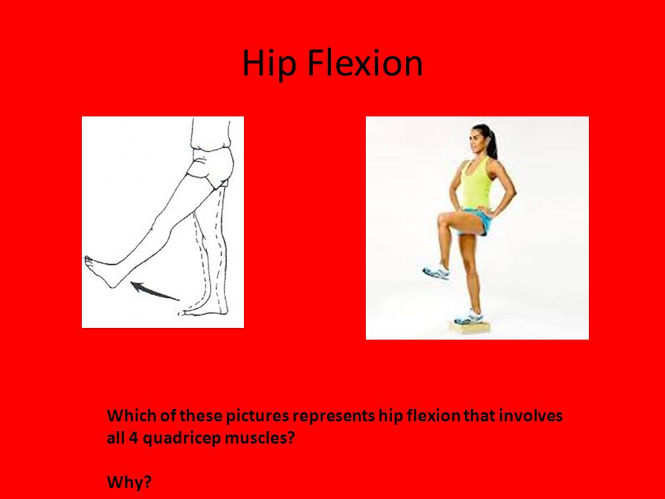 Hip Flexion Which of these pictures represents hip flexion that involves all 4 quadricep muscles? Why?