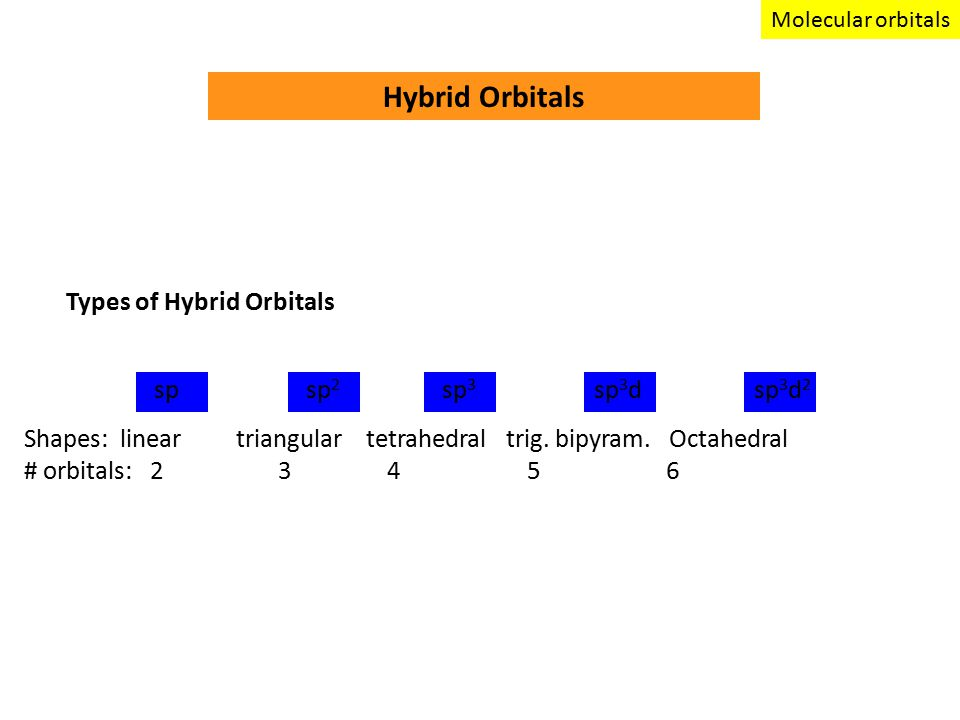 Hybrid Orbitals spsp 2 sp 3 sp 3 dsp 3 d 2 Types of Hybrid Orbitals Shapes: linear triangular tetrahedral trig.