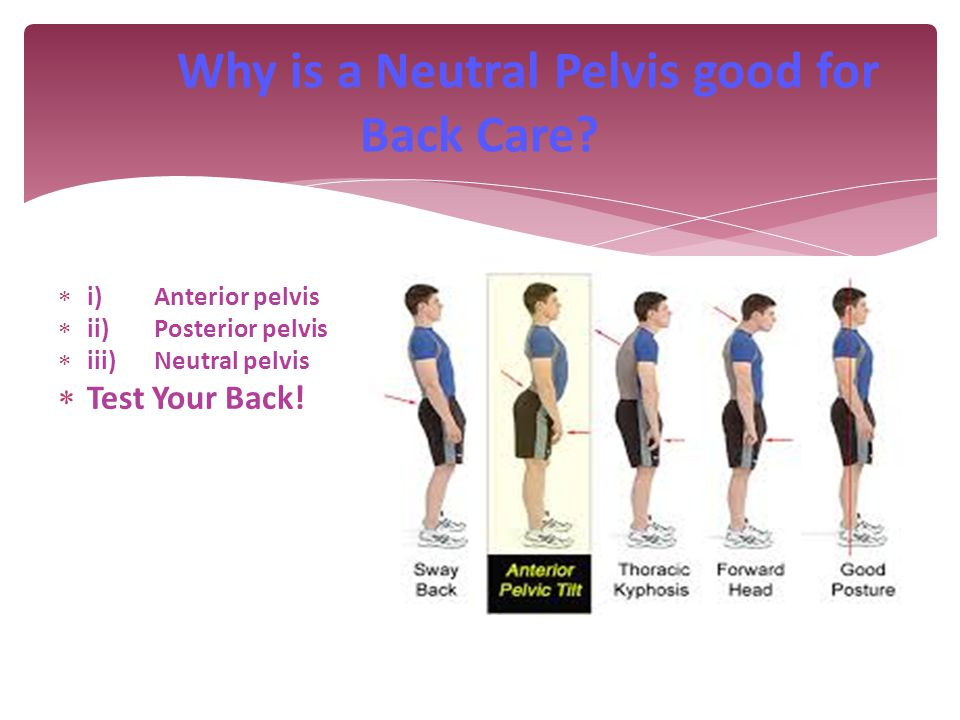 Why is a Neutral Pelvis good for Back Care.