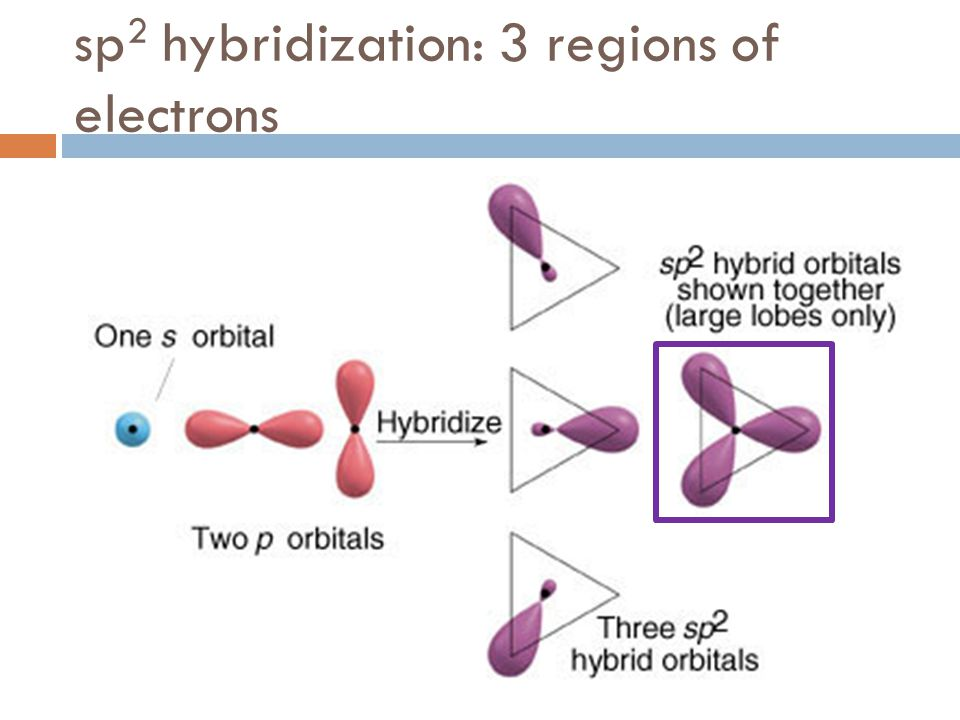 sp 2 hybridization: 3 regions of electrons