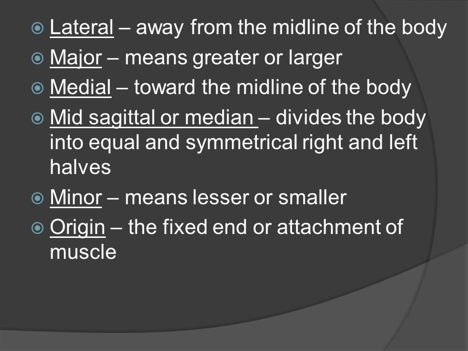  Lateral – away from the midline of the body  Major – means greater or larger  Medial – toward the midline of the body  Mid sagittal or median – d