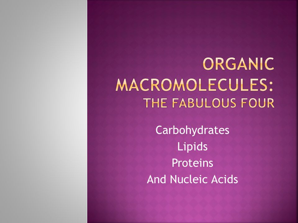 Carbohydrates Lipids Proteins And Nucleic Acids