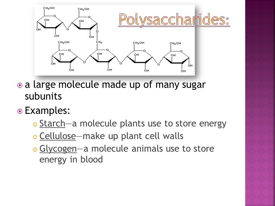  a large molecule made up of many sugar subunits  Examples: Starch—a molecule plants use to store energy Cellulose—make up plant cell walls Glycogen
