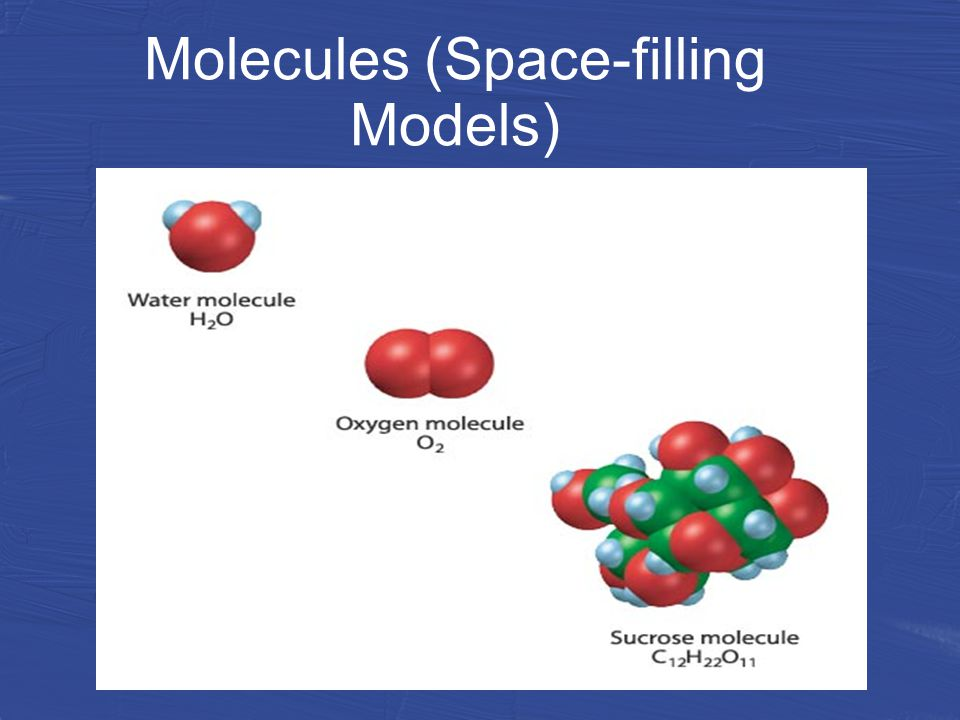 Molecules (Space-filling Models)