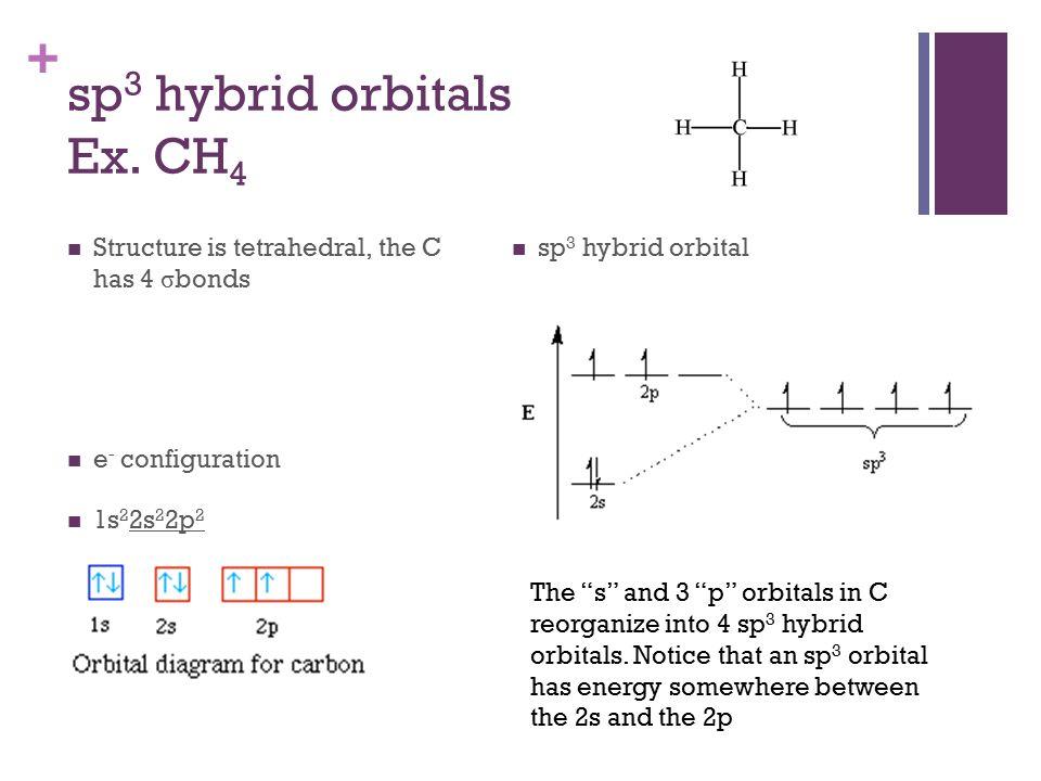 + sp 3 hybrid orbitals Ex.