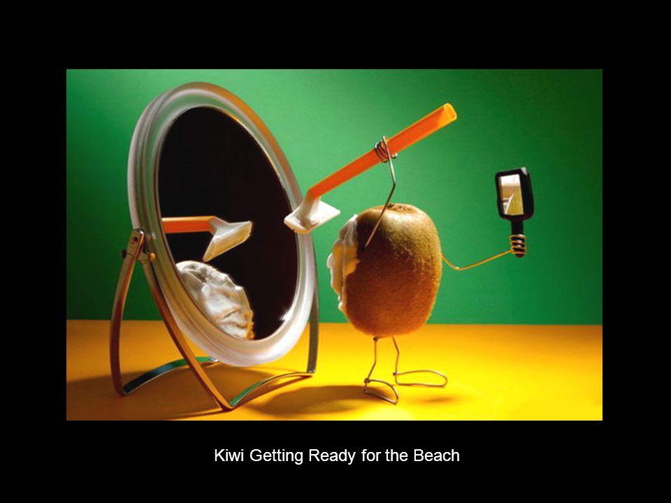 Kiwi Getting Ready for the Beach