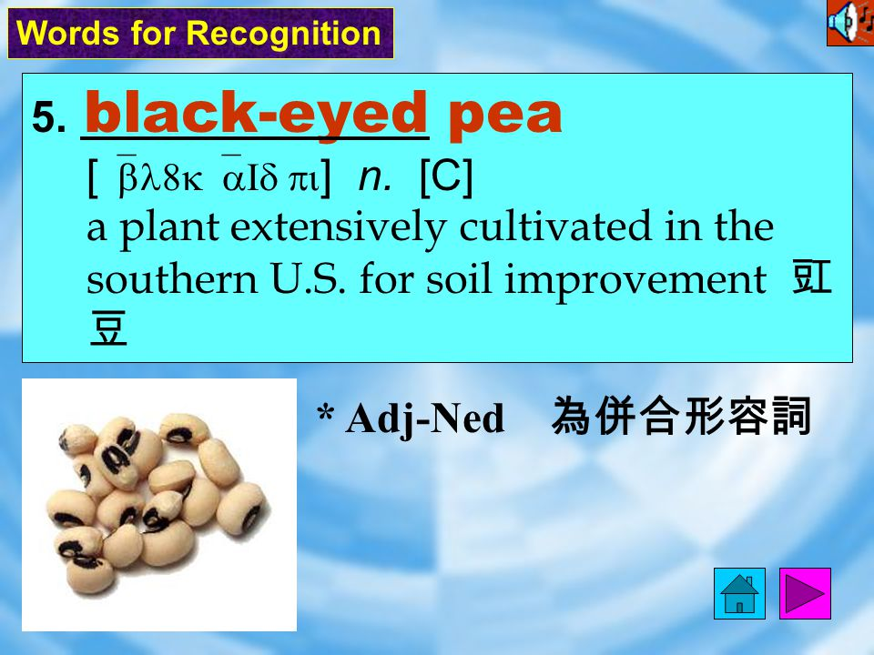 5.black-eyed pea [ `bl8k`aId pi ] n. [C] a plant extensively cultivated in the southern U.S.