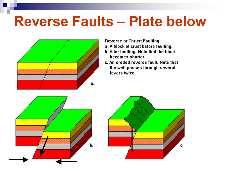 Reverse Faults Caused By Compressional Forces (push) Land moves together at Fault. Footwall plate is forced under or below the hanging wall. Hanging w