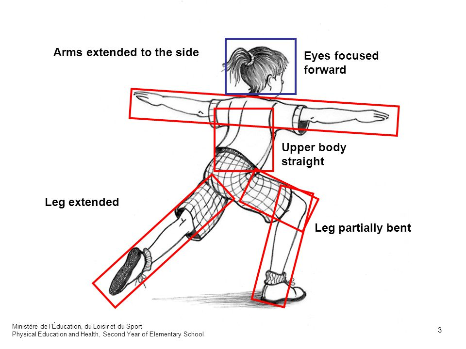 Leg partially bent Leg extended Upper body straight Arms extended to the side Eyes focused forward Ministère de l'Éducation, du Loisir et du Sport Phy