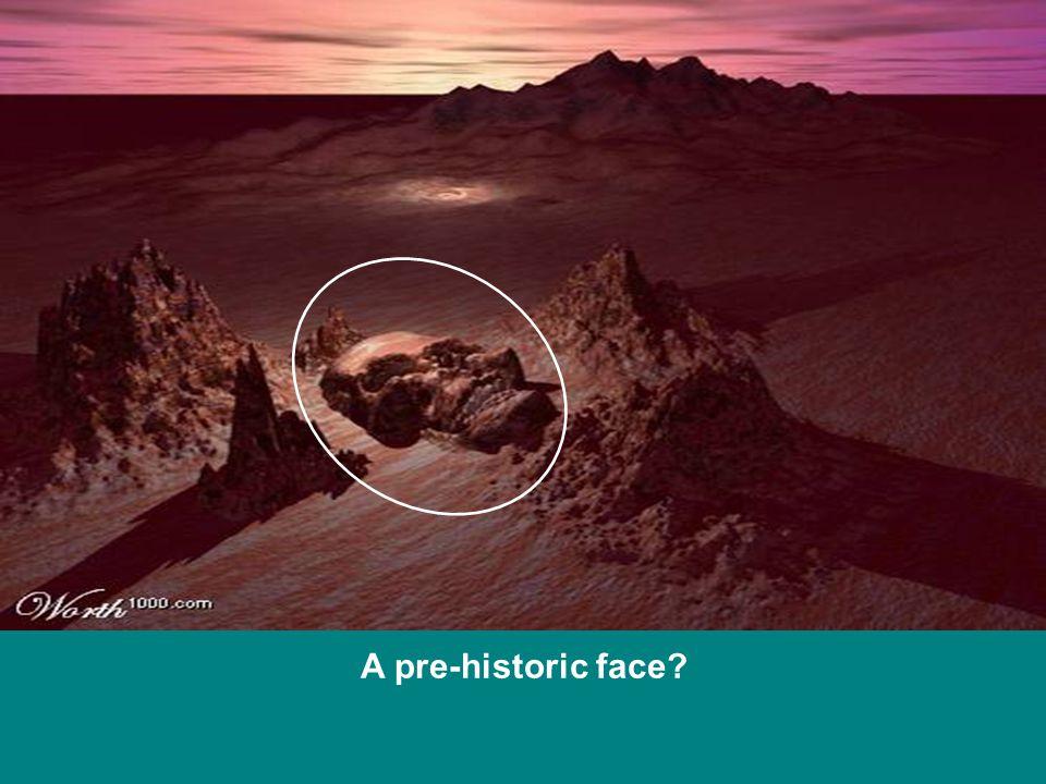 A pre-historic face