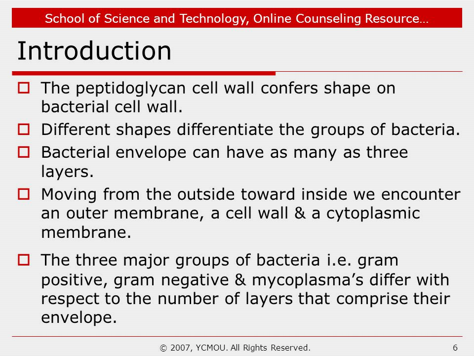 School of Science and Technology, Online Counseling Resource… What We Learn………….
