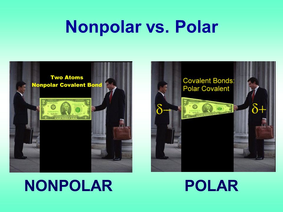 Nonpolar vs. Polar NONPOLARPOLAR