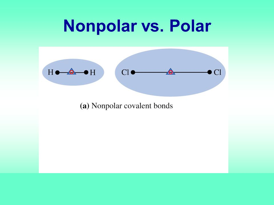 Nonpolar vs. Polar