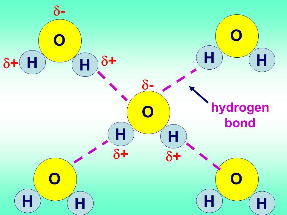 O H H O O H H O O H H O O H H O O H H O hydrogen bond ++ ++ -- ++ ++ --