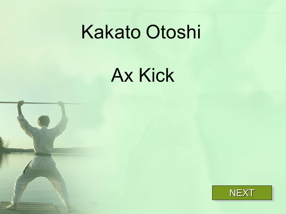 Kakato Otoshi Ax Kick NEXT