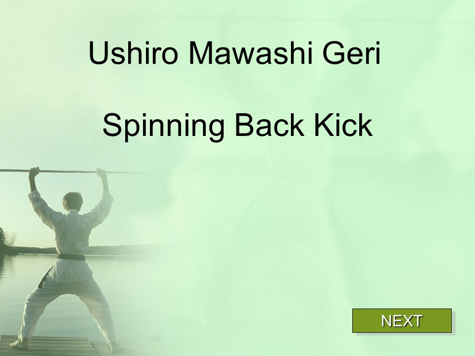 Ushiro Mawashi Geri Spinning Back Kick NEXT