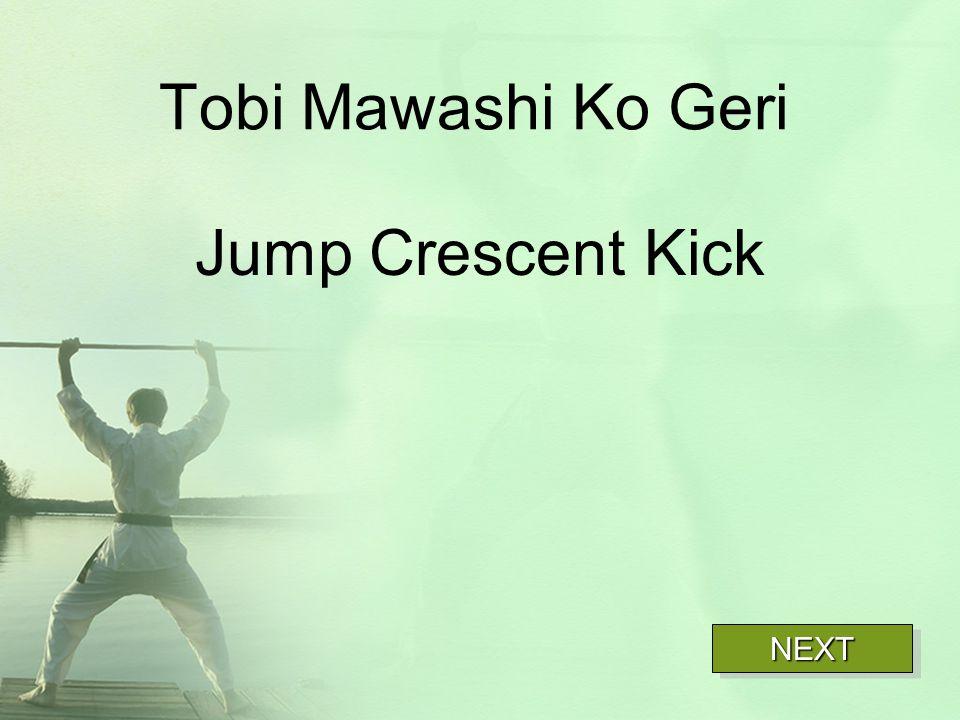 Tobi Mawashi Ko Geri Jump Crescent Kick NEXT
