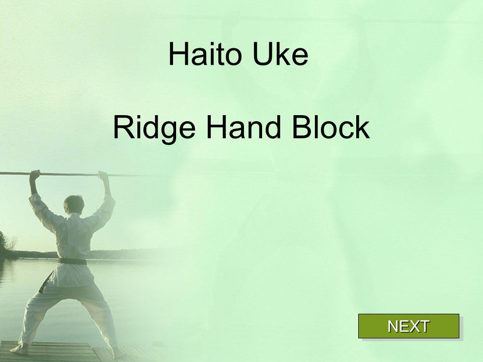 Haito Uke Ridge Hand Block NEXT