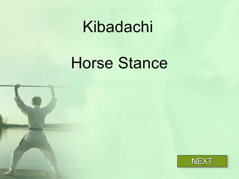 Kibadachi Horse Stance NEXT