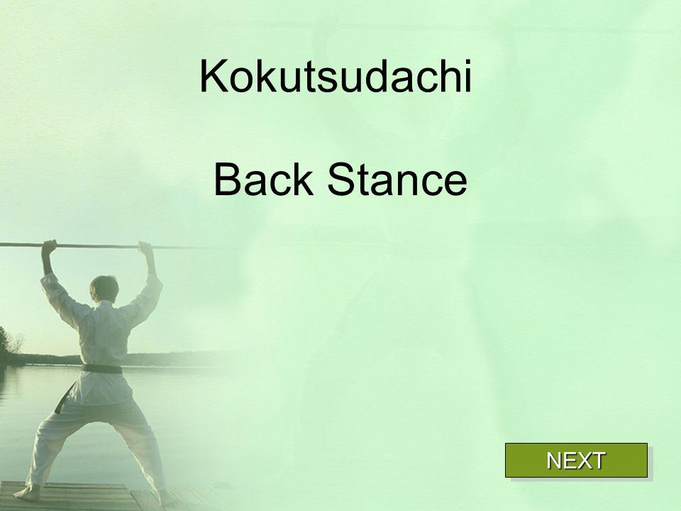 Kokutsudachi Back Stance NEXT
