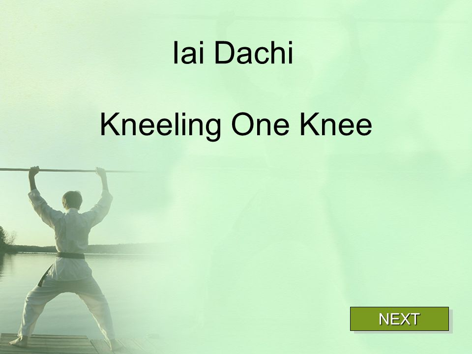 Iai Dachi Kneeling One Knee NEXT