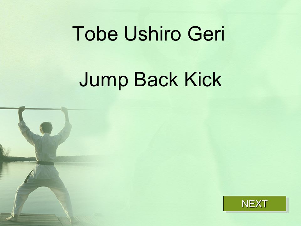 Tobe Ushiro Geri Jump Back Kick NEXT