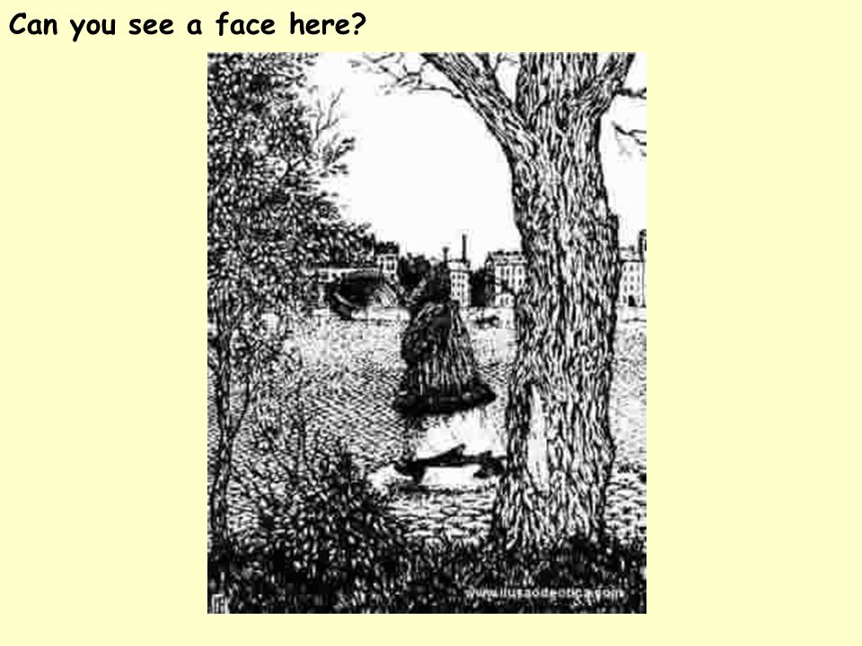 Can you see a face here