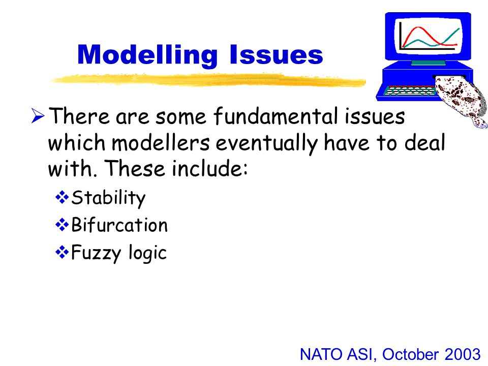 NATO ASI, October 2003 Modelling Issues  There are some fundamental issues which modellers eventually have to deal with.