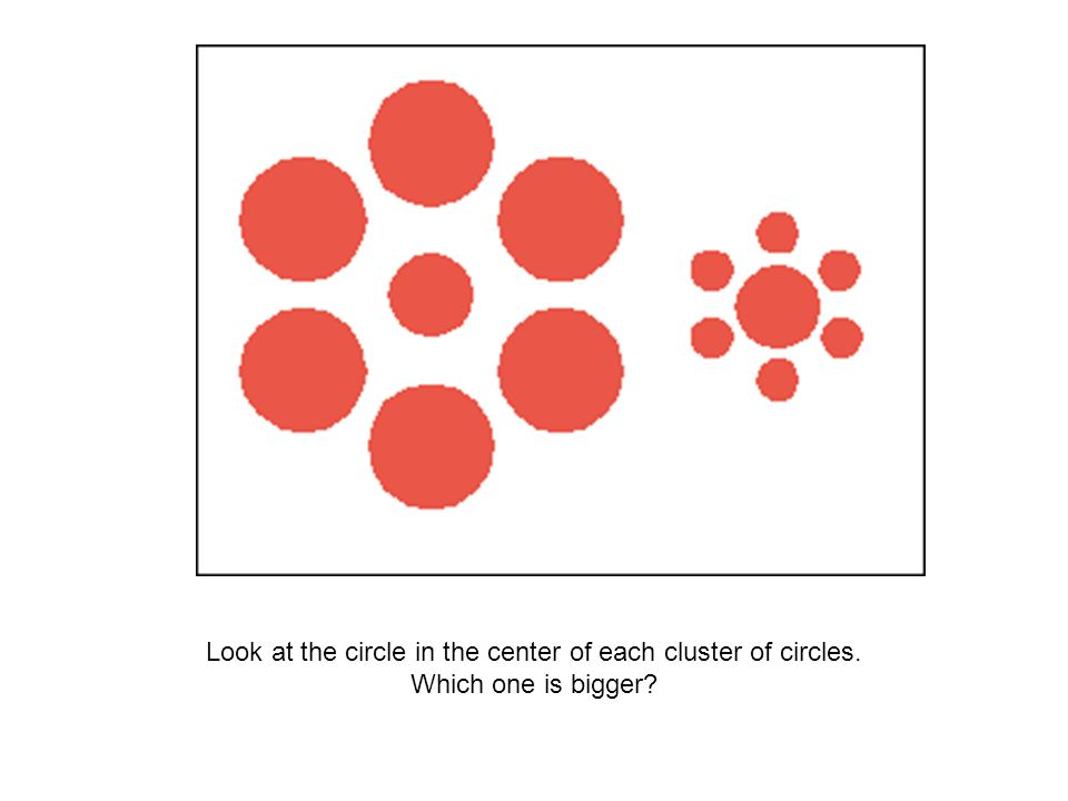 Look at the circle in the center of each cluster of circles. Which one is bigger