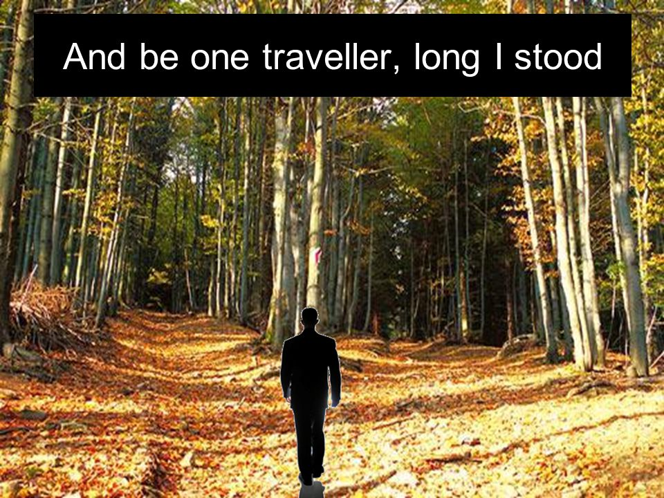 And be one traveller, long I stood