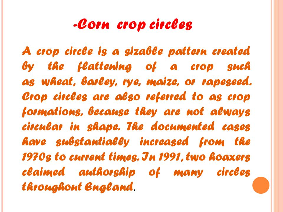 -Corn crop circles A crop circle is a sizable pattern created by the flattening of a crop such as wheat, barley, rye, maize, or rapeseed.