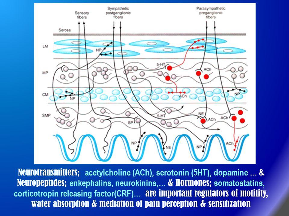 Neurotransmitters; acetylcholine (ACh), serotonin (5HT), dopamine … & Neuropeptides; enkephalins, neurokinins,… & Hormones; somatostatins, corticotrop