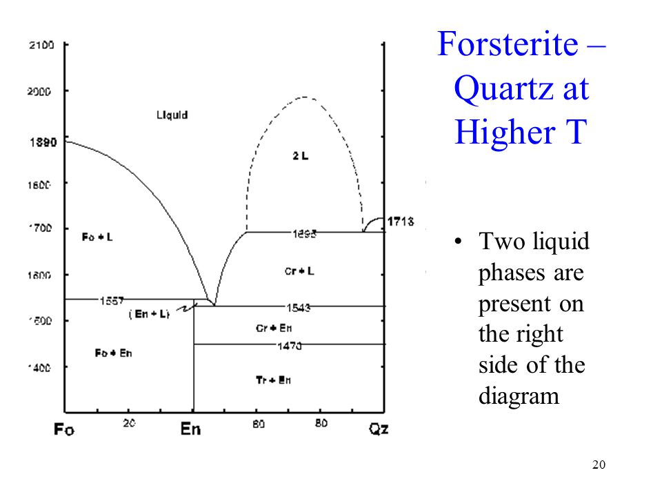 20 Forsterite – Quartz at Higher T Two liquid phases are present on the right side of the diagram