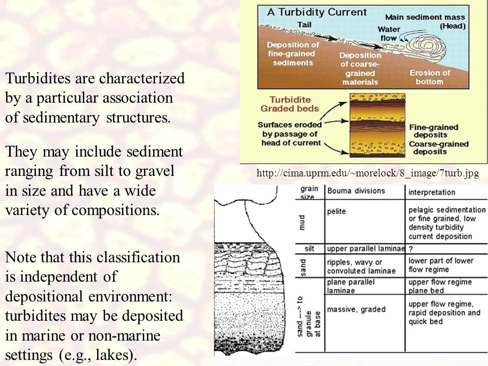 http://cima.uprm.edu/~morelock/8_image/7turb.jpg Turbidites are characterized by a particular association of sedimentary structures. They may include