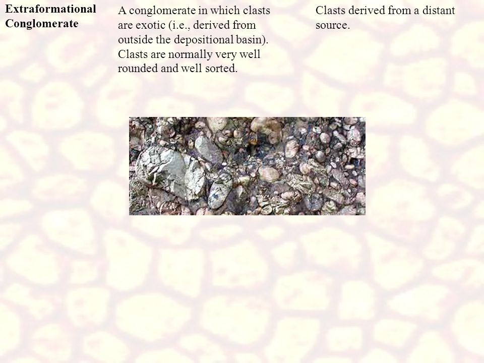 Extraformational Conglomerate Clasts derived from a distant source. A conglomerate in which clasts are exotic (i.e., derived from outside the depositi
