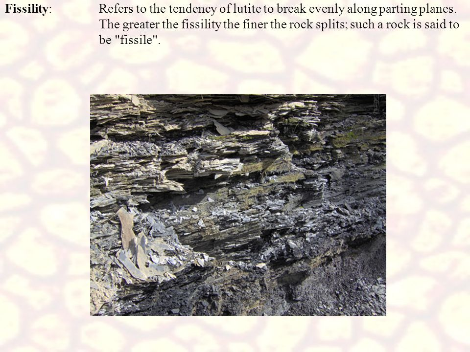 Fissility:Refers to the tendency of lutite to break evenly along parting planes. The greater the fissility the finer the rock splits; such a rock is s