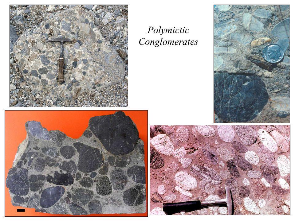 Monomictic Quartz-Pebble Conglomerate