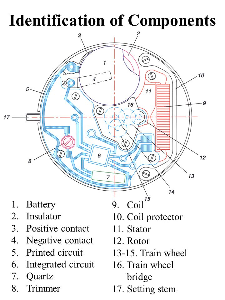 Identification of Components 1.Battery 2.Insulator 3.Positive contact 4.Negative contact 5.Printed circuit 6.Integrated circuit 7.Quartz 8.Trimmer 9.Coil 10.Coil protector 11.Stator 12.Rotor 13-15.