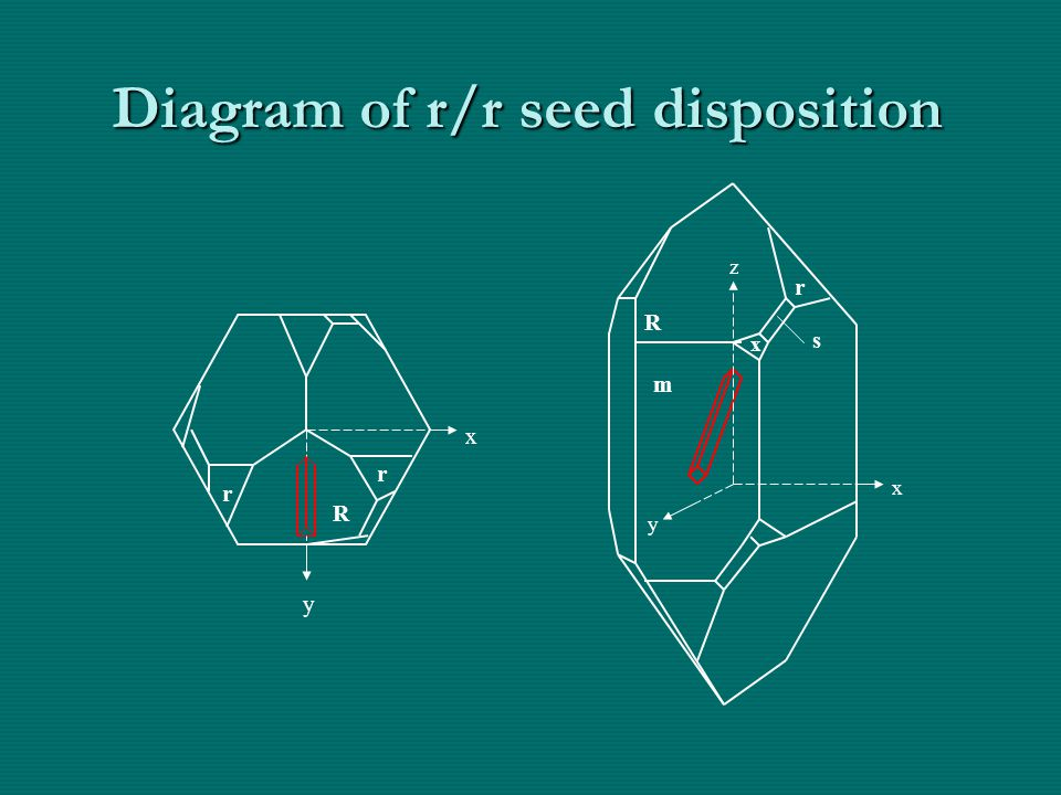 Diagram of r/r seed disposition m R r s x R r y x z x y r