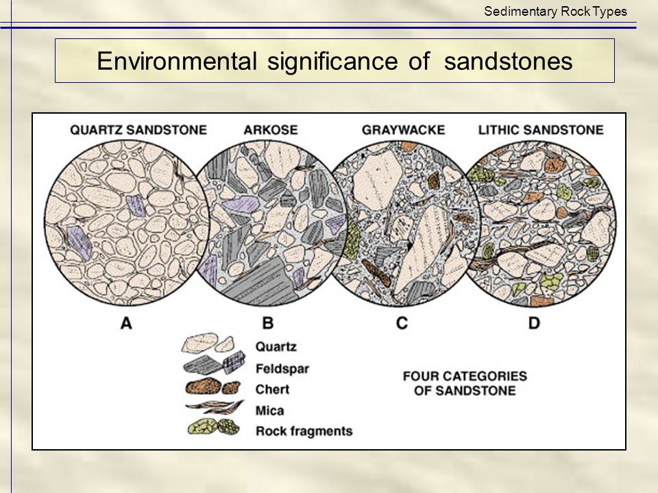 Environmental significance of sandstones Sedimentary Rock Types