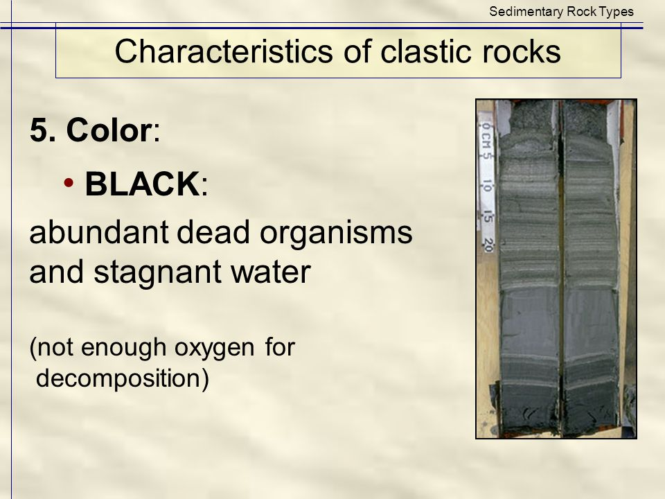 Characteristics of clastic rocks Sedimentary Rock Types 5. Color: BLACK: abundant dead organisms and stagnant water (not enough oxygen for decompositi