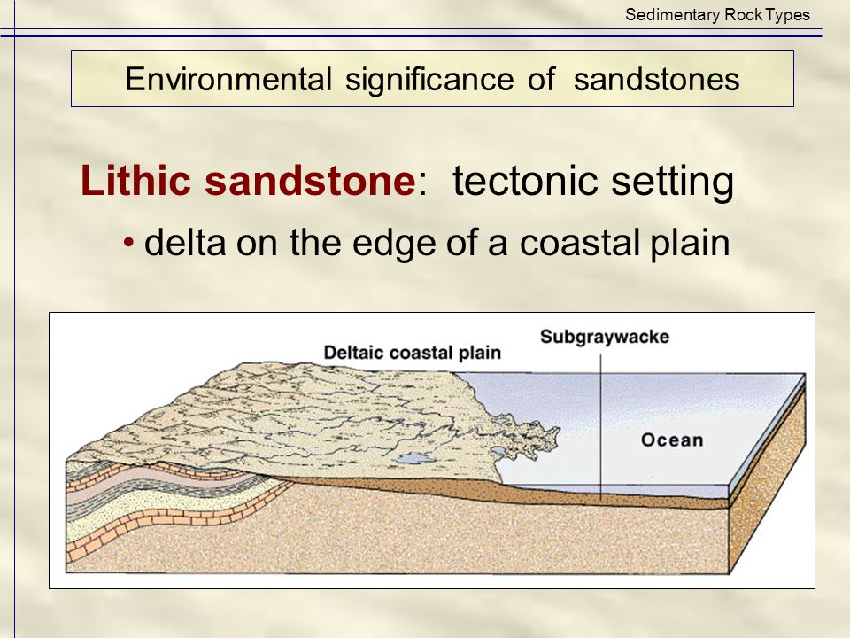 Sedimentary Rock Types Lithic sandstone: tectonic setting delta on the edge of a coastal plain Environmental significance of sandstones