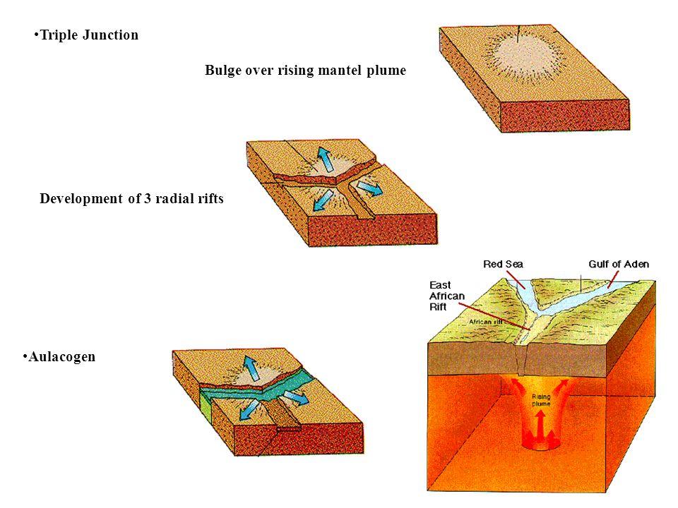Triple Junction Bulge over rising mantel plume Development of 3 radial rifts Aulacogen