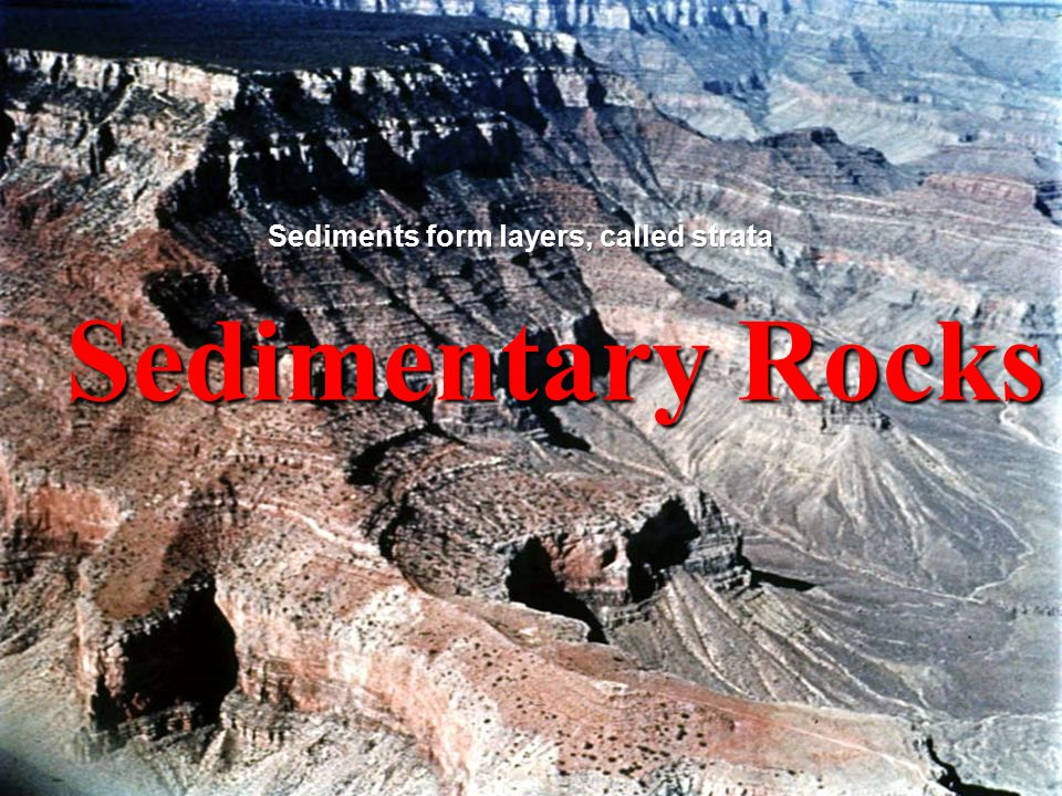 Sedimentary Rocks Sediments form layers, called strata