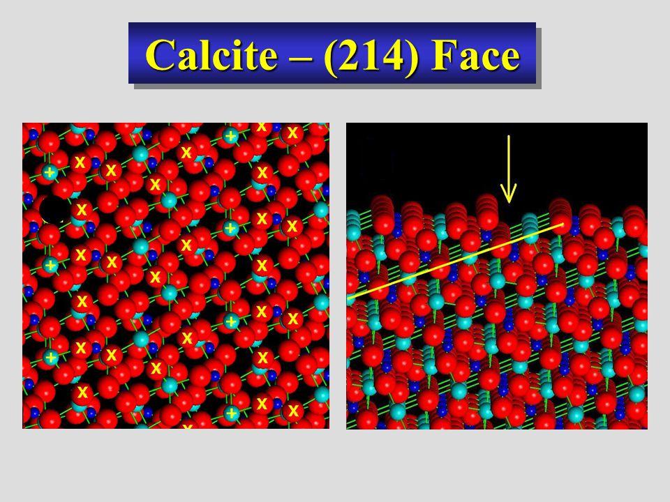Calcite – (214) Face