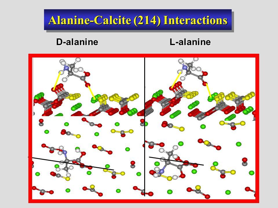 Alanine-Calcite (214) Interactions D-alanineL-alanine