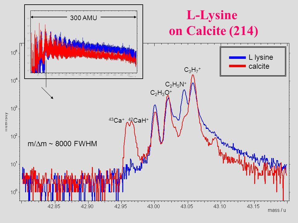 43 Ca +42 CaH + C2H3O+C2H3O+ C2H5N+C2H5N+ C3H7+C3H7+ L lysine calcite m/  m ~ 8000 FWHM 300 AMU L-Lysine on Calcite (214)